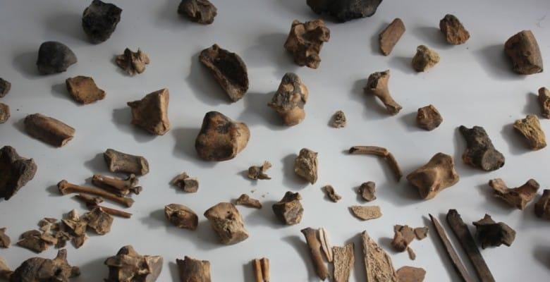 Bones from Boncuklu
